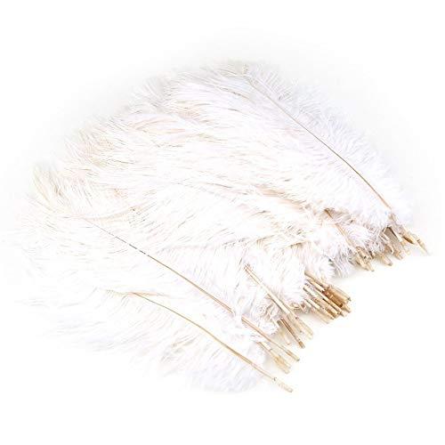 50 Teile/Satz 25-30 cm Lange Straußenfedern DIY Hochzeit Dekorative Federn-weiß