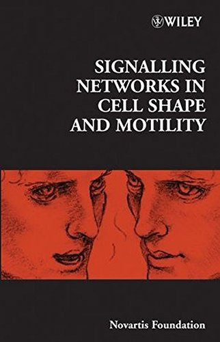 signalling-networks-in-cell-shape-and-motility