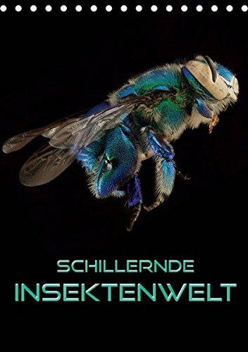 welt (Tischkalender 2019 DIN A5 hoch): Faszinierende Nahaufnahmen verschiedener Insekten im Kontrast zu schwarzem Hintergrund (Monatskalender, 14 Seiten ) (CALVENDO Tiere) ()