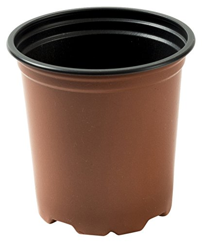 Nutley's Modiform Lot de 250 pots de semis ronds en plastique 9 cm