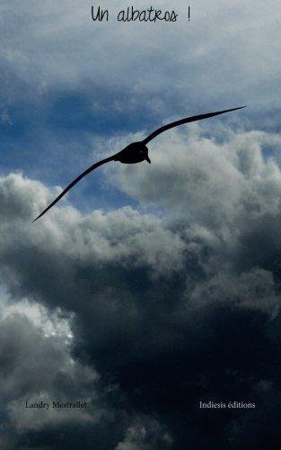 Un albatros !