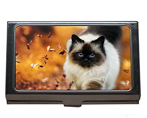 Visitenkartenhalter Brieftasche Kreditkarte ID Fall/Inhaber, blaue Augen Himalaya-Katze Tier Natur Katze Natur Edelstahl-Kartenhalter -