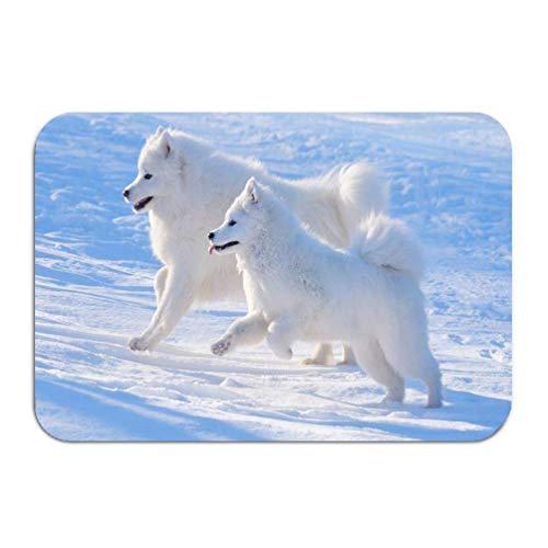heefan Outside Shoe Non-Slip Color DOT Doormat Two Samoyed Dogs Mats Entrance Rugs Carpet 16 * 24 inch