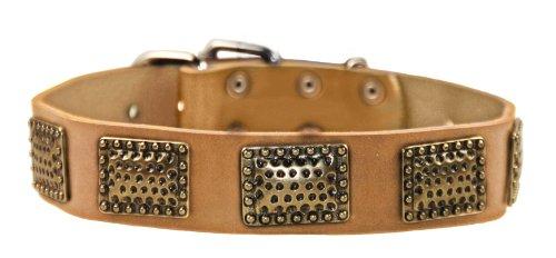 """Dean und Tyler """"Drum Roll"""" Hundehalsband, aus Leder mit gehämmertes Messing vergoldet Hardware–Tan, Größe 18von 1–1/2–Passend für Hals 16Zoll zu 50,8cm"""