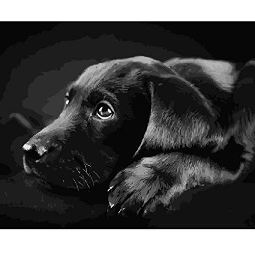 AZYVv Holz Puzzle DIY Puzzles 1000 Stück Schwarz Labrador Retriever Tier Hochzeit Bild Kunst Besonderes Geschenk Spiel Home Decoration -