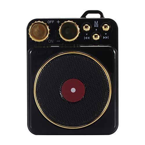 LRWEY T10 Portable Vintage Phonograph Sound TF Outdoor Wireless Bluetooth 4.2 Speakers für iPhone, Samsung usw.
