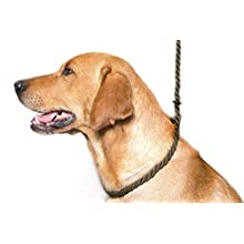 Dog & Field Deluxe Gundog Slip Lead (Olive Green) Soft 8mm Spliced Marine Rope with Rubber Stopper - One Size Fits All and Suitable For All Breeds of Dog with 2 Colour Options (Olive Green)