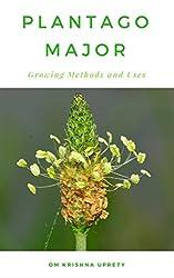 Plantago major: Growing Methods and Uses (English Edition)