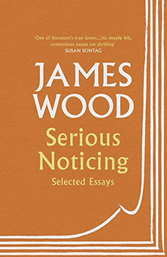 Serious Noticing: Selected Essays (English Edition) - Amis Boston