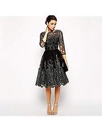156ad420ed557f YXXHM- Damen Vintage Kleid, Quality Silver Line Bestickt Puff Dress