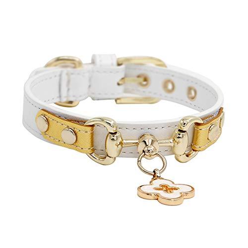 GWM Handgefertigte Luxus Echtleder Hundehalsband in Weiß und Gold, dauerhaft und robust, wetterfest und wasserdicht, Hals 20cm-44cm (größe : M) -