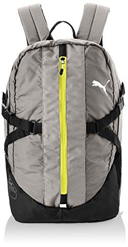PUMA Rucksack Apex Backpack - Mochila, color gris (steel gray), talla 33.5 x 48 x 22.5 x 22.5 , 35.0 l