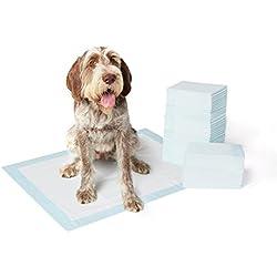 AmazonBasics Hygieneunterlagen für Haustiere, Groß, 60 Stück