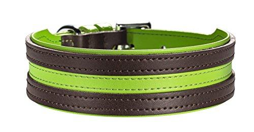 hundeinfo24.de Hunter Hundehalsband Basic Marbella Stripes, braun/apfelgrün, Größe 40