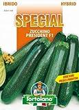 Sementi di ortaggi ibride e selezioni speciali ad uso amatoriale in buste termosaldate (80 varietà) (ZUCCHINO PRESIDENT F1)