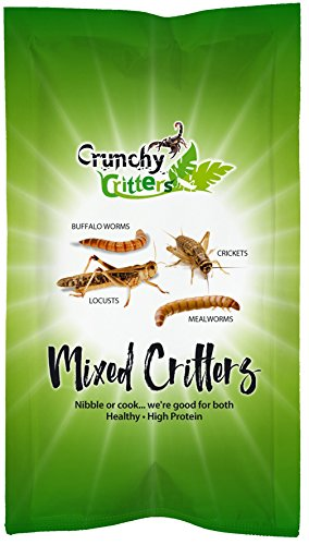 Mixed Critters -...