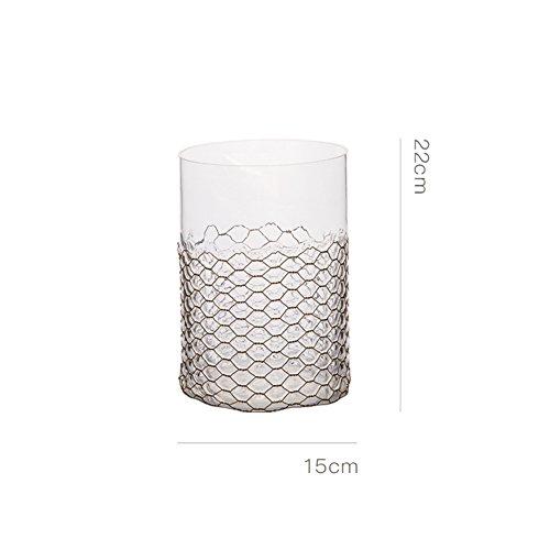Simple European Water Culture Transparent Glass Vase/creative Living Room Floral Decorations-a