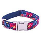 PetSoKoo Hundehalsband, Qualität, strapazierfähig, Leicht Gewicht, Quick Release Verstellbare Größe
