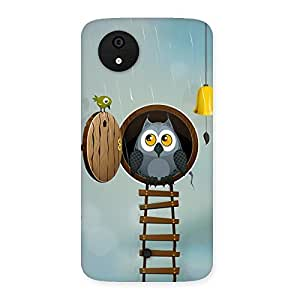 Raining Leader Owl Back Case Cover for Micromax Canvas A1