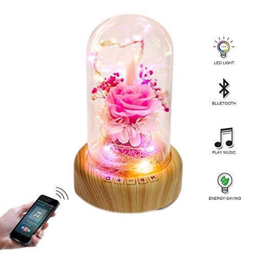 IACON LED Bluetooth Lautsprecher Nachtlicht Wishing Flasche Lautsprecher wiederaufladbare drahtlose LED Stimmung Tischlampe Weihnachten dekorative Lampe für Weihnachten Geburtstag (ewige Blumen)