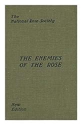 Flower / Lynn Goldsmith ; Foreword by Donald Sultan