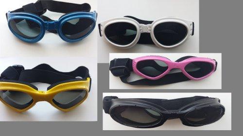 Neue Hundebrille, Sonnenbrille für Hunde in der Farbe blau!