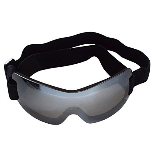 LUFA Haustier UV schützende randlose Sonnenbrille Augen tragen Schutz mit verstellbaren Armband für großen Hund
