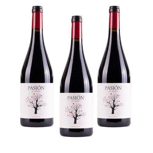 Pasion de Bobal - Vino Tinto - 3 Botellas width=