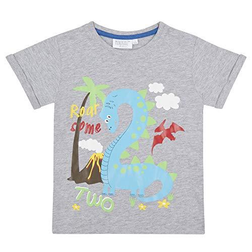 (Jungen und Mädchen Geburtstag Alter T-Shirt Sommer Top 1-6 Jahre Tolle Geschenkidee - Junge Marineblau 2, 92)