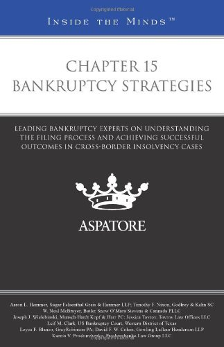 chapter-15-bankruptcy-strategies-leading-bankruptcy-experts-on-understanding-the-filing-process-and-
