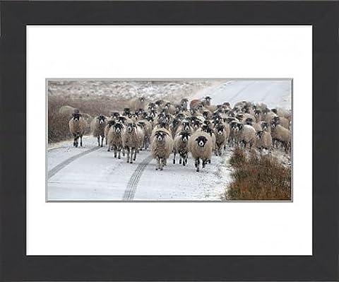 Framed Print of Winter weather Jan 31st