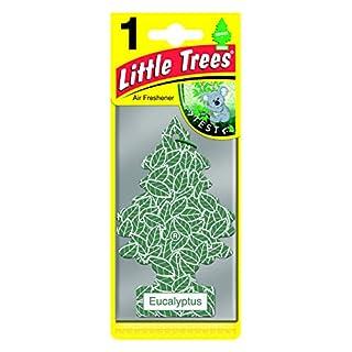 Arbre_Magique PER90532 Auto-Lufterfrischer, Eukalyptus-Duft Grün Weiß