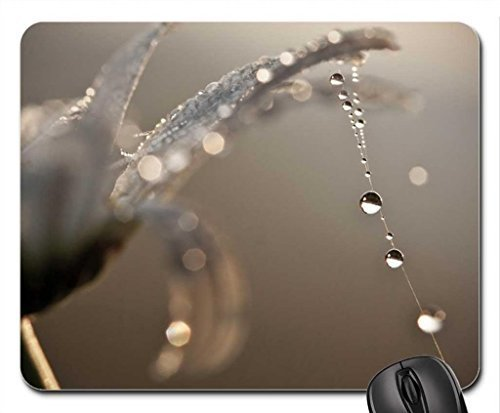 drops-on-clue-mouse-pad-mousepad-flowers-mouse-pad