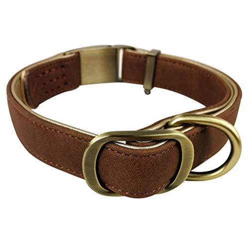 Penivo Große Hundehalsbänder aus Leder Metallschnalle Pet Luxury Medium Kleine Hunde Einstellbar Basic Classic Halsband (M (29cm-43cm), Braun) -