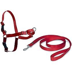 PetSafe Harnais pour Chien Moyen Easy Walk (M) - Harnais Ajustable et Anti-Traction - 4 points de Réglage pour un Confort Maximal - Rouge
