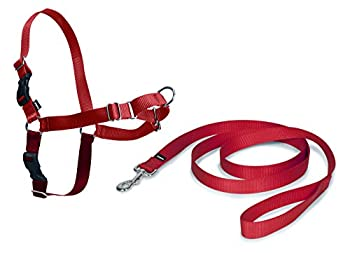 PetSafe - Harnais pour Chien Moyen Easy Walk (M),  Facile à Utiliser, Anti-Traction avec 4 points de Réglage pour un Confort Maximal - Rouge