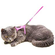 Cat Set of Harness Nylon Lead 125cm (Pink) - Soft Adjustable - Best for Kitten Walking