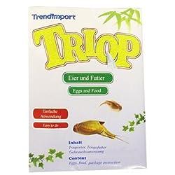 Trend Import 10001200 - Trend Import - Triops Urzeitkrebse (lose)