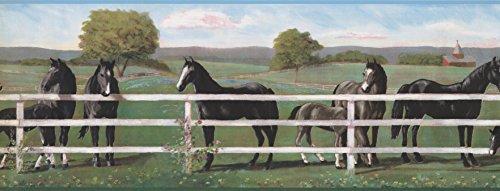 Tapetenbordüre Pferde Bordüre 8243 RU