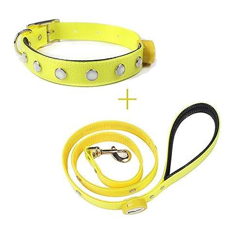 pawow Wiederaufladbare LED Hundehalsband Nacht Sicherheit Halsband
