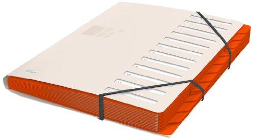 ELBA 400033687 Ordnungsmappe for Business aus Kunststoff 12 Fächer/Taben Pultordner sand - Profesionelle Projektorganisation auf dem Schreibtisch und unterwegs
