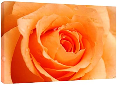 MOOL Large 32 x 22-inch Rose Flower Canvas Wall Art Print Hand Stretched on a Wooden Frame with Giclee Waterproof Varnish Finish Ready to Hang, Orange Peach