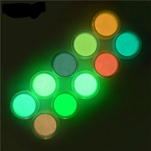 10Farben Luminous Nail Powder UV Gel Polish Glow in the Dark Glitter Nail Tip Pigment fluoreszierend Puder Nail Dekorationen Nail Art Geschenk-Set (Glow In The Dark Pulver Set)