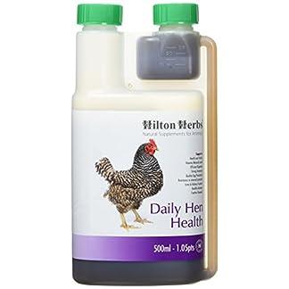 Hilton Herbs Daily Hen Health 500 ml Hilton Herbs Daily Hen Health 500 ml 41eBPq2Xp 2BL