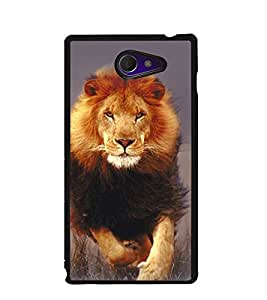 Fuson Premium Hunting Lion Metal Printed with Hard Plastic Back Case Cover for Sony Xperia M2 Dual