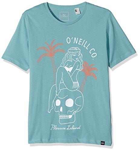 O'Neill Herren T-Shirt LM PLEASURE ISLAND T-SHIRT Türkis - Turquoise (Dusty Turquoise)