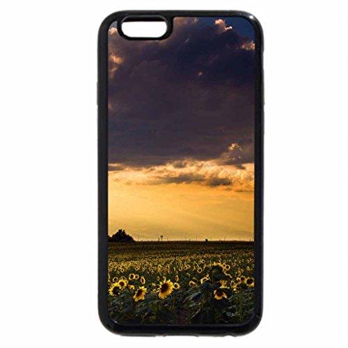 iPhone 3S/iPhone 6Coque (Noir) un Summer Evening Serenade