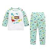 Shopaholic0709 Neugeborenes Baby Langärmelige,Baby Mädchen Jungen Dinosaurier Prints Home Furnishing Set Weiß Baby Strampler Bedrucken lustige Baby Bodys