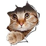 jysport 3d gatos pegatinas de vinilo de graffiti de Laptop de equipaje de bicicleta Bolsa de pared de pared pegatinas de pared Baños de kühlraum decorativo de, Cat