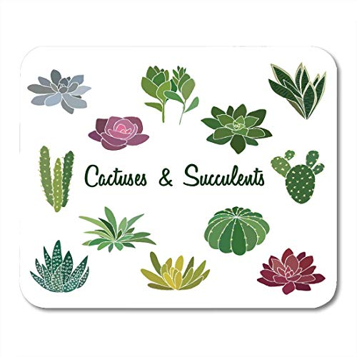 Mouse Pads Apartment Blue Aloe of Succulent and Cactus Illustrations Green Cute Ball Mouse Pad for Notebooks,Desktop Computers Mouse Mats, Office Supplies -